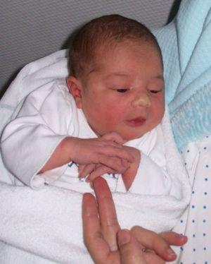 Ic�a recén nacida